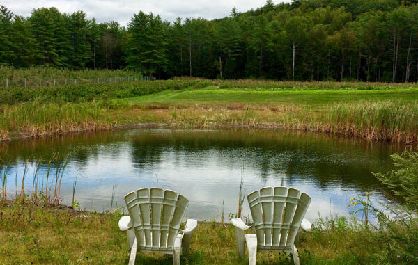 two white chairs by a small pond in a field
